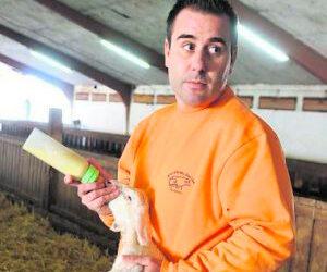 Una granja de Valladolid investiga la cría de lechazos bajos en calorías y colesterol
